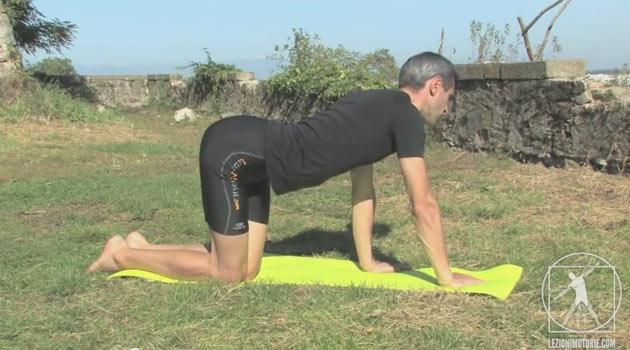 5 Video con esercizi facili per il mal di schiena
