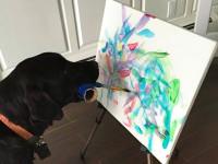 il-cane-che-dipinge