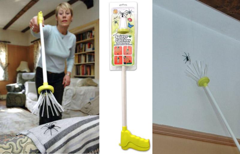 acchiappa-ragni
