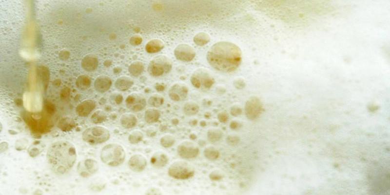 10 curiosità sulla birra che non sapevi